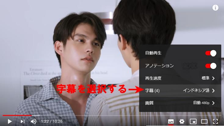 YouTube日本語訳02