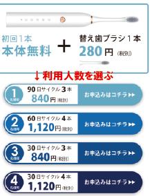 ガレイド入会02